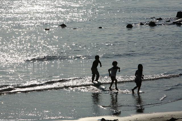 秋海の波打ち際