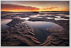 Thanks All! (moe chen) Tags: ocean beach pine sunrise point dawn bravo heart tide low maine sigma moe scarborough 1020mm chen moe76 wwwmoechenphotographycom