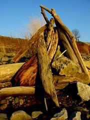 ready to burn (frankieleon) Tags: sky interestingness sticks interesting bestof logs cc creativecommons riverbank popular ohioriver frankieleon