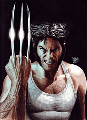 wolverine-painting500