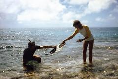 881130 Minerva Reef 2 (rona.h) Tags: november 1988 cloudnine ronah minervareef