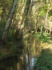 FERRERIA EL POBAL 4 (lillarra2006) Tags: puente agua molino euskadi vizcaya presa hierro muskiz ferreria pobal lillarra200
