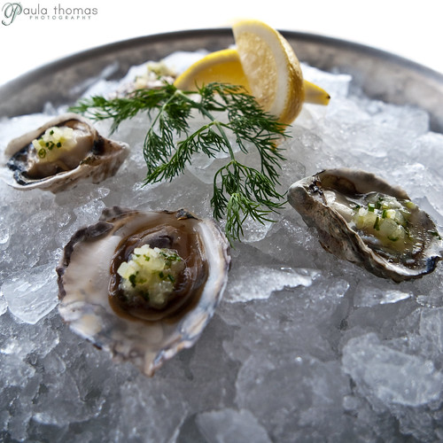 Oysters on the Rocks