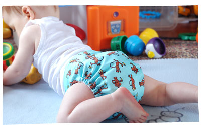 Cloth Diapers -Happy Heinys One Sized Cloth Diapers