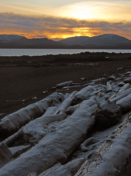 snow-covered logs on the beach at sunset, Kasaan, Alaska