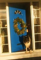 wreath0004