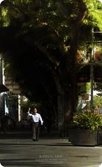 Viva la Revolucin! (digitalpimp.) Tags: street interestingness singapore candid scout explore walkabout flare cbd sunrays picnik orchardroad lightstreaks theworldthroughmyeyes digitalpimp nathanhayag konicaminoltaafdt18200mmf3563d bananats