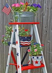 Happy 4th Of July (Sagebrush7 (Rayann)) Tags: holiday americanflag patriotic explore 4thofjuly independenceday oldladder abigfave celebrateandbehappy