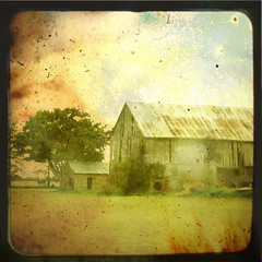 Dust (Robb North) Tags: 1932 1931 1936 bowl kansas dust 1934 1930 1933 1935 kentcounty dustinthewind t4l kittykatfish chathamkent fauxttv fakettv dirtythirties memoriesbook ttvtexture robbnorth