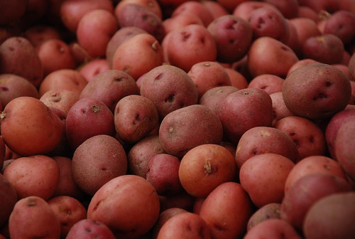 inspired by freshly-dug red potatoes