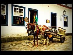 Brazil (AC Espilotro) Tags: brasil paraty nikon janela cavalo d80 carregamento