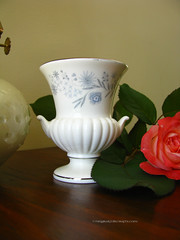 Wedgewood (magikalfolk) Tags: wood greenleaves rose pottery wedgewood blueflowerpattern