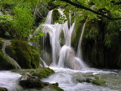 chiare, fresche, dolci acque..... (g.fulvia) Tags: park water waterfalls acqua croazia plitvice cascate dalmazia plitvickajezera parcp cuneofotografia