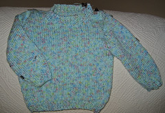 20090821 Baby Sweater with Clippy Things