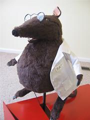 Rat puppet