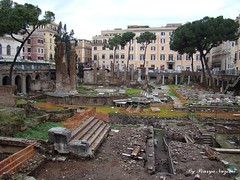 Rome,Largo di Torre Argentina-04 (pouryanazemi) Tags: italy loveit harmony contact goldheart beautifulshot flickrific diamondheart worldicon historyantiquities zafirogroup grouparchaeology historicalgems memoryofdailylife traksofthepast 500crazycomments
