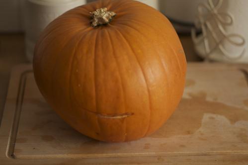 4021739093 a800bdd204 How To Make Pumpkin Puree