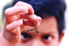 It's their day ! Let them enjoy... (GOPAN G. NAIR [ GOPS Creativ ]) Tags: india children photography day gopsorg gopangnair