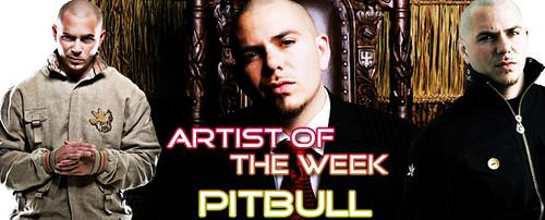 VidZone Artist Of The Week: Pitbull