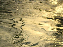 Liquid Gold (tumultuouswoman) Tags: blue light shadow white abstract black reflection texture wet water yellow contrast silver river golden glow ripple surface glowing sheen luminous tranquil