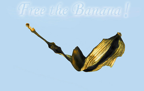 Free The Banana!