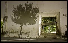 Sombras de lo real (Berta de la Vega) Tags: españa night noche spain sombras cuenca castillalamancha olmedilladelcampo