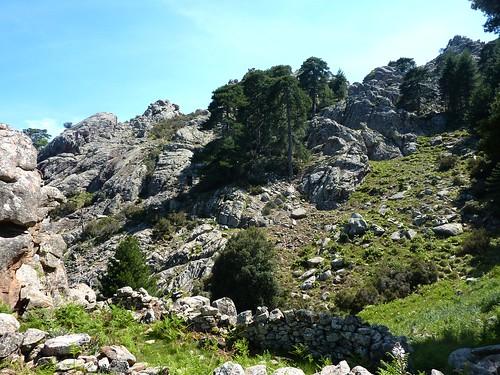 Crêtes de Marignana : bergerie du Vitullu avec vue du versant descendu depuis l'arête du Vitullu