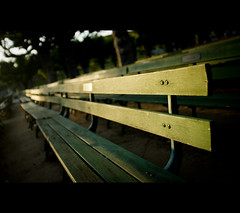 Bench (kaoni701) Tags: sf sanfrancisco goldengatepark sunset night bench bokeh rangefinder fujifilm cinematic ggp musicconcourse academyofsciences x100 wheressuki