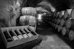 Wine Cave (Miss Basil85) Tags: queenstown otago southisland newzealand nz gibbstonvalley wine winery winecave cave drink blackwhite black white grey monochrome barrels travel nikon d3200 lowlight