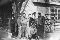 029b the detachment (donmaclean) Tags: ww2 eto veterinarycorps