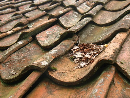 Swedish tile roof