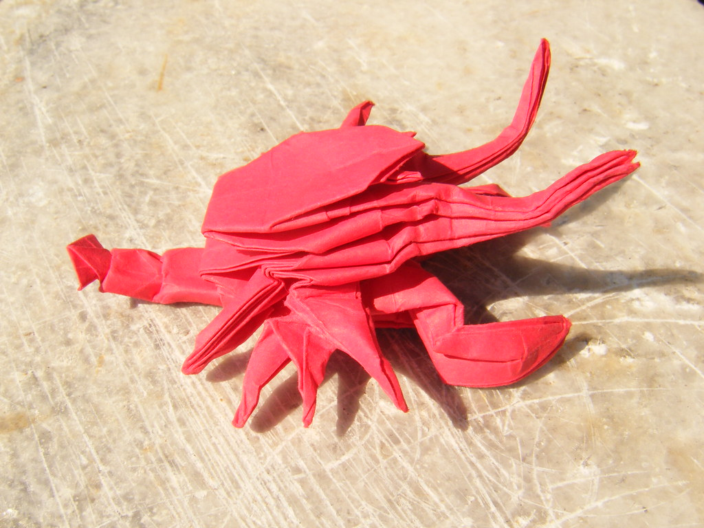 The Worlds Most Recently Posted Photos Of Lobster And Origami
