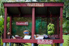 Maui Fruit Stand (JunBelen) Tags: flowers fruits island hawaii pacific maui hawaiian tropical fruitstand roadtohana flowerstand pacficocean junbelen junbelencom