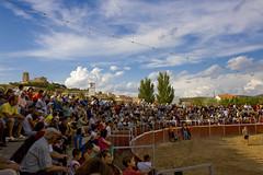 fotos Agosto 3815815344_6b394543c5_m