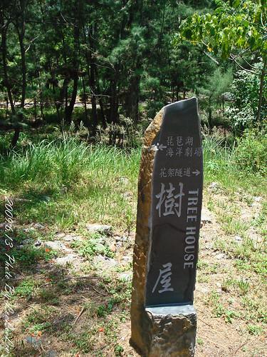 台東親子遊|台東森林公園|黑森林公園~如夢似幻的琵琶湖