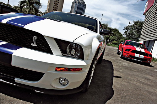 2010 Ford Mustang Shelby Gt500 Convertible. Ford Shelby GT500 2010