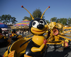 Bee ride at MN State Fair