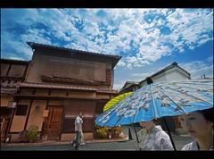 Walking in Gion (Fabio Sabatini) Tags: japan blog kyoto sigma maiko geiko geisha    gion honshu 10mm     mamechiho mamehana