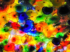 COLORS OF GLASS (carolynthepilot) Tags: travel las vegas blue red vacation sculpture usa holiday flower chihuly art glass colors beautiful yellow architecture modern hotel artwork colorful published artist photographer purple calendar artgallery lasvegas kodak handmade getaway unique modernart postcard landmark exhibit ceiling retro resort bbc leisure bellagio luxury dalechihuly artworks artglass handblownglass ceilinglight handblown artexhibit awardwinningphoto lightingfixture ceilingart vegasstrip glassflowers retroart goldenwings madeintheusa worldtraveller glasspetals colorsoftherainbow artistdalechihuly kodakz980 carolynbistline carolynthepilot carolynsworld bistline bbcsponsor awardwinnerphoto bbcsponsored vivilasvegas carolynthepilotyahoocom artistofglass sculptureofglass