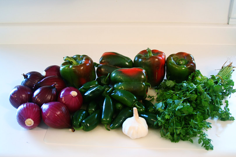 Salsa Veggies