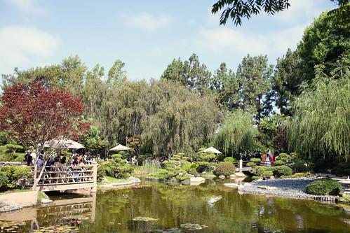 Japanese Earl Burns Miller Japanese Garden