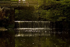 Horseshoe Falls (ruairidhwhitecross) Tags: river scotland waterfall nikon south eastkilbride lanarkshire calderglen d40