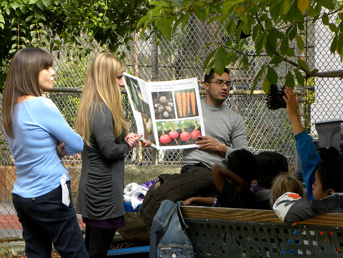 Portable School Garden: PS 102 Bay Ridge, Brooklyn