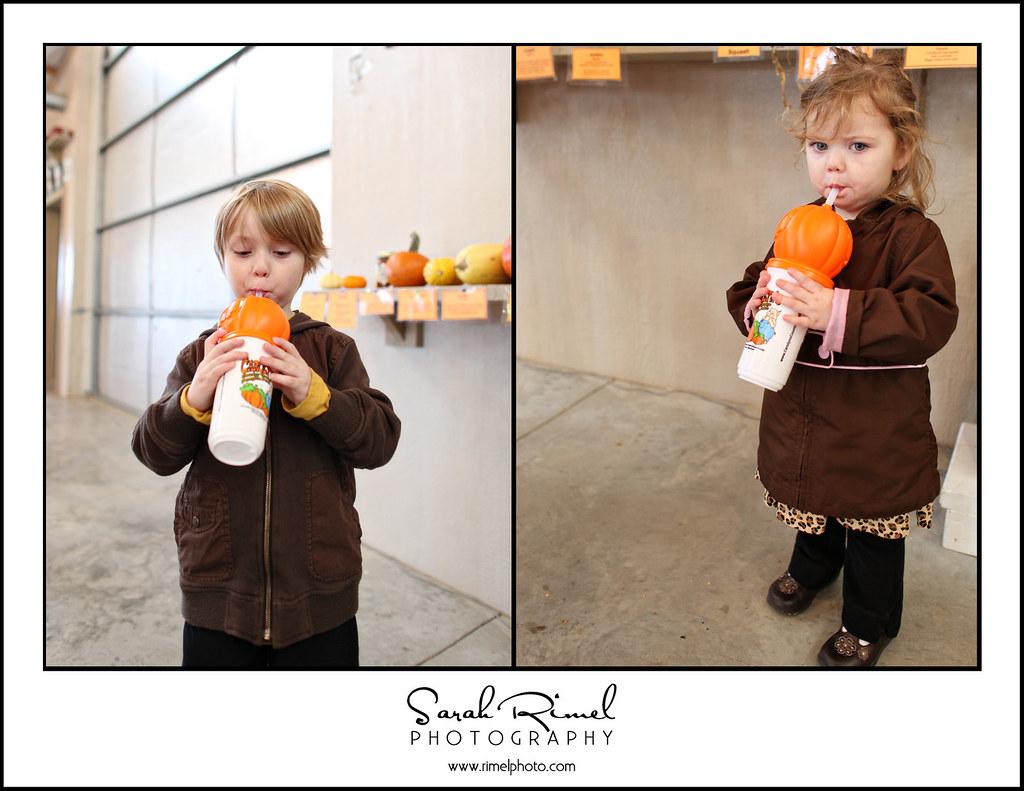 pumpkins 33