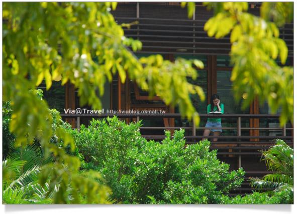 【北投一日遊】北投圖書館~綠色概念美學的圖書館