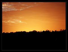 ([b4N3]) Tags: morning november sky cloud water river october serbia 2008 danube novisad voda vojvodina srbija nebo dunav    jutro srem novembar oktobar baka  srbin   backa