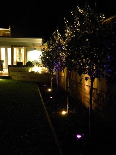 Garden Lighting Wilmslow Image 1