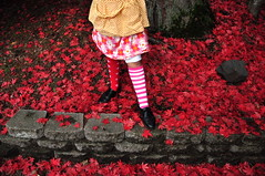 saturday something: pipi (jon madison) Tags: family autumn red people fall leaves socks yard dress stripes daughter pipi longstocking skit jonmadisoncom dsc4213