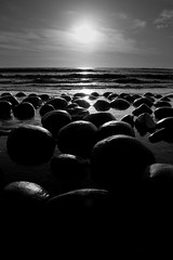 They all turned (Mike Rosati Photography) Tags: highway1 bowlingballbeach rosati schoonergulch