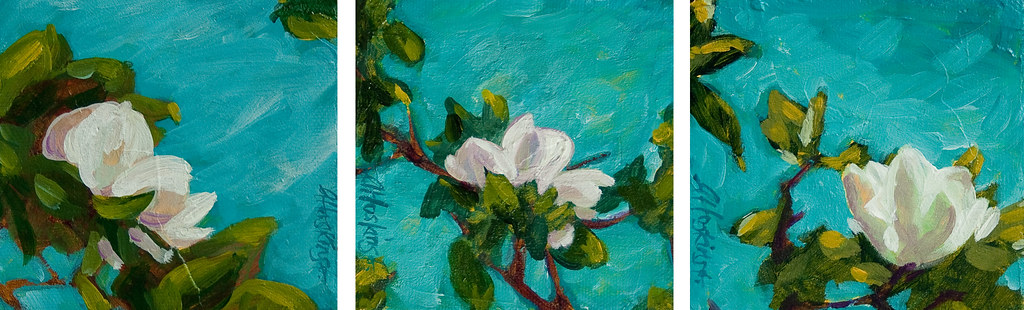 magnolia a, b, and c